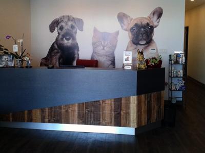 JOTMedical_Veterinary_Clinic_Construction